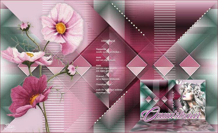 Indispensable de Pink