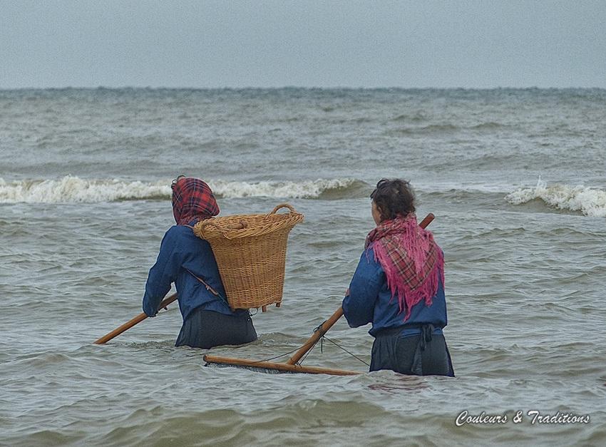 La pêche des crevettes grises