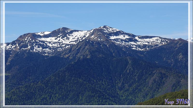 Quelques sommets pyrénéens vus du Col de Caube - Bezins-Garraux - 31