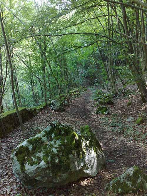 Blog en pause illimitée -- La Haute Savoie (1) !