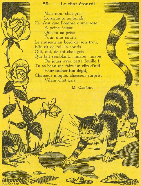 Le chat étourdi (poème de Maurice Carême)