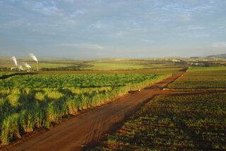 agriculture-copie-2.jpg