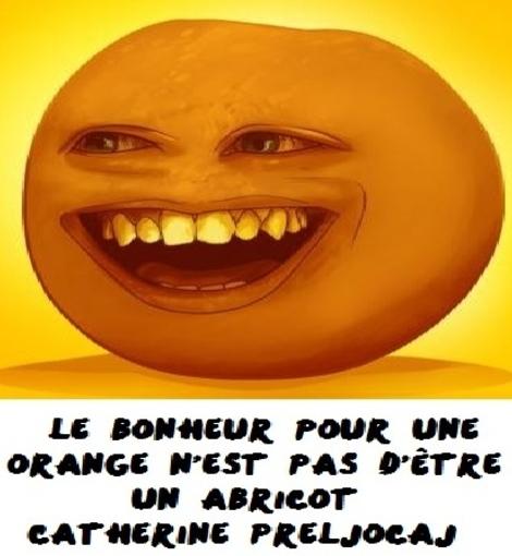 bonheur orange abricot