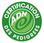 Logo Certification ADN