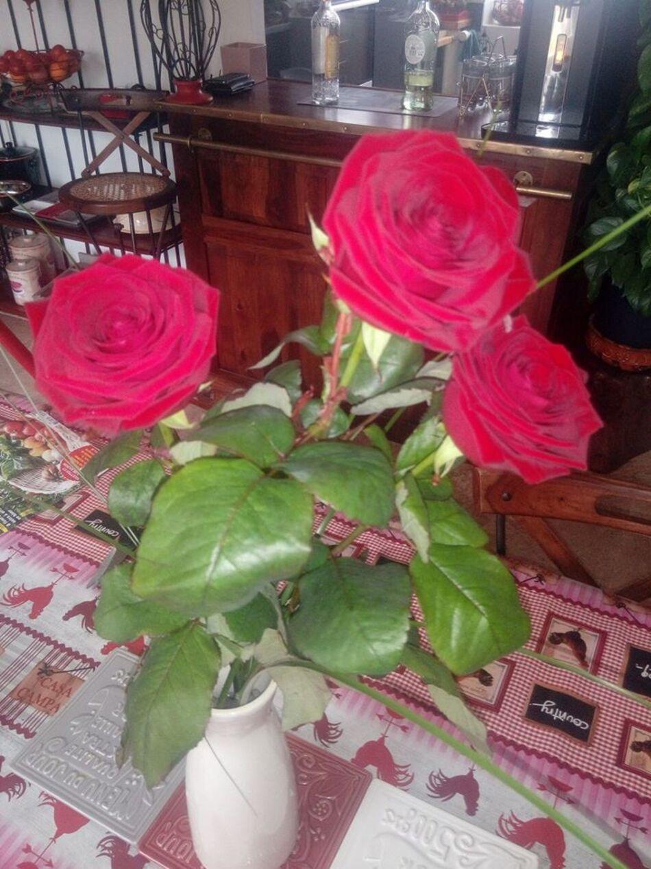 Trois Produits de Saison (2) + fleur du vendredi