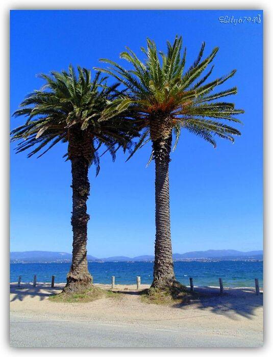 Praia das Sinas