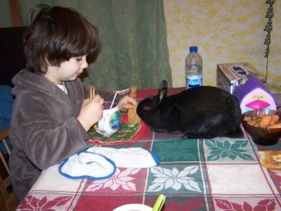 Blog de chipiron :Un chipiron dans les Landes, Petit Déj abec Bunny
