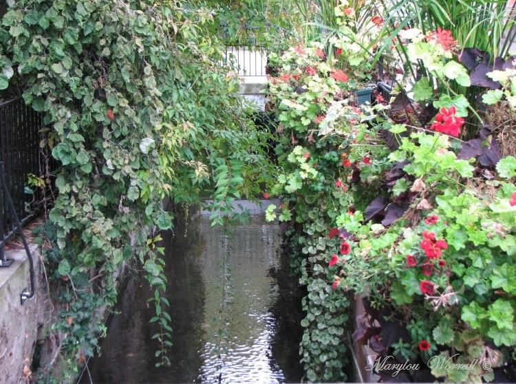 Jeux d'eau colmariens : Le Gerberbach quartier des Tanneurs