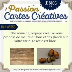 Passion cartes Créatives#558 !