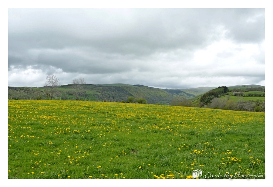 Pailherols - Cantal - Auvergne - 05 Mai 2015