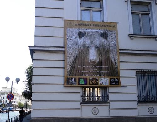 Dofia: autour de l'église Zaint Nicolas