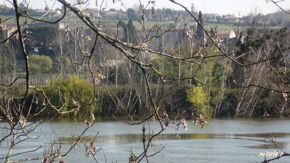 Sur la Garonne  !!!               8 mai