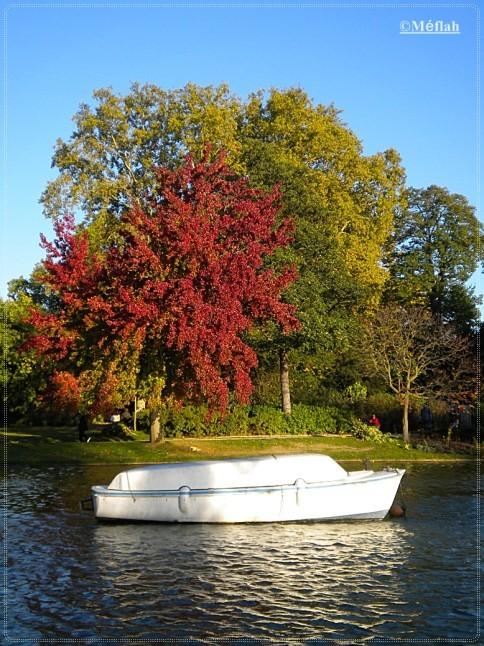 24 octobre 2011 L'automne au lac Daumesnil 1