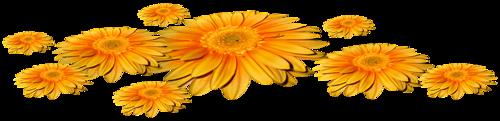 Fleurs en Farandole Série 28