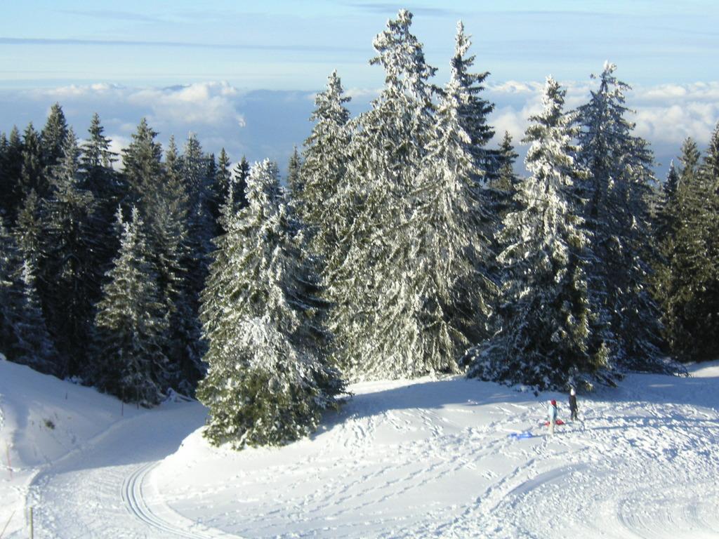 Les Alpes deuis le Semnoz (2)