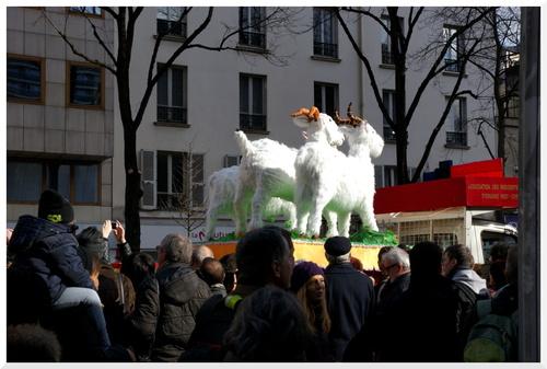 Cela aurait du être un beau Nouvel An chinois 2015