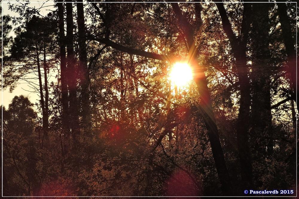 Reflets et lumières d'automne au lac du Bousquey - 6/6