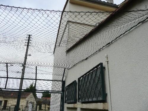 jardin-securise-pour-les-chats-7.JPG