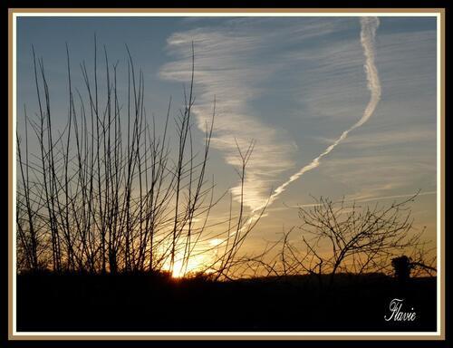 L'aurore en janvier