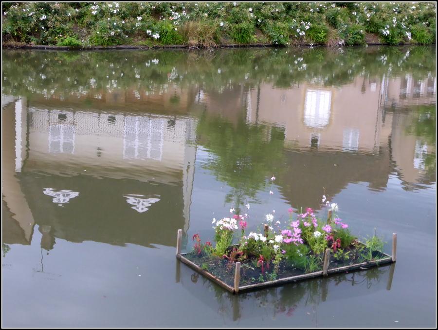 Balade tranquille en Saône et Loire, ce dernier WE