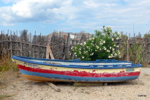 Barcarès: les cabanes des pêcheurs...