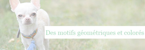 Doggie Flair : Collier moderne et original Maclaud It Dogs - Howard le chichi blog canin