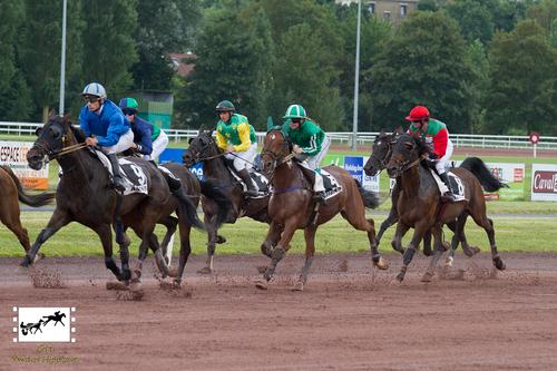 Prix Swedishman