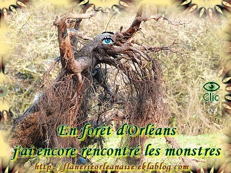 En forêt d'Orléans, j'ai rencontré les monstres