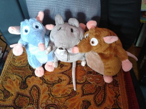 Les Potins de Mister Potame - épisode 3 : c'est... les rats !