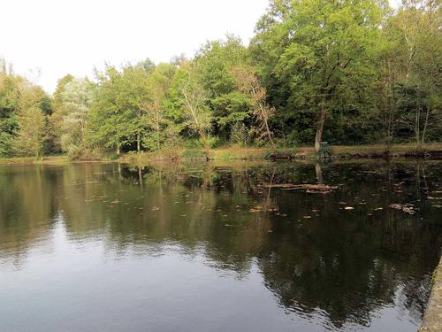 Un samedi au bord de l'étang