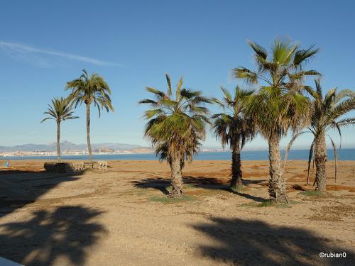 Los Aranales del Sol, playa de Carabassi