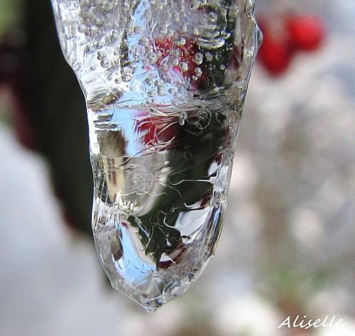 Goutte-glacee-2010--15.jpg