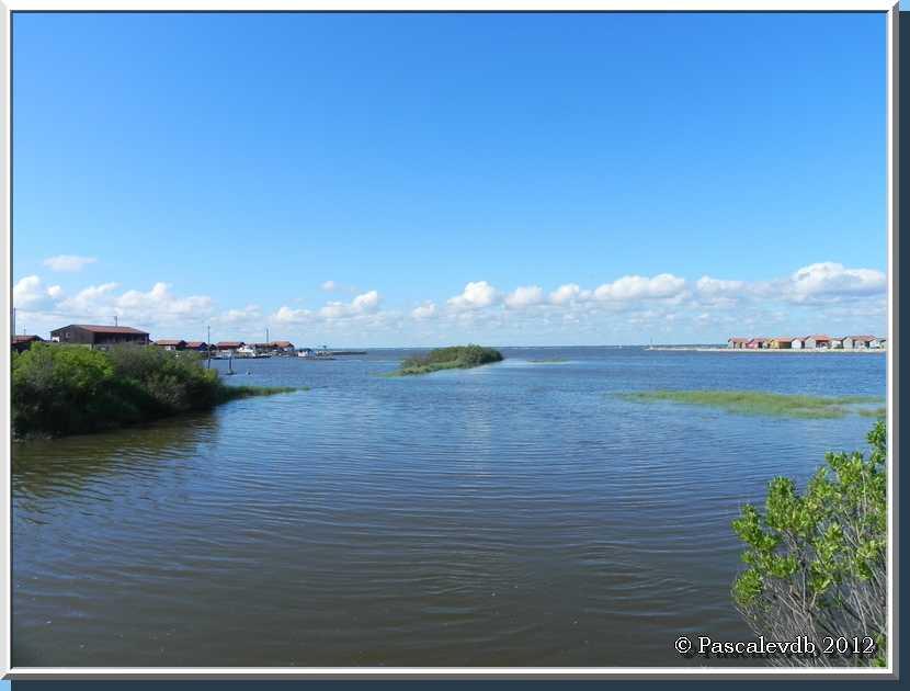 Gujan Mestras - Le port de Larros et la jetée du Christ - 3/3