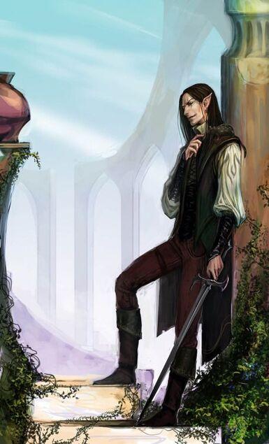 Elf fighter / Bard