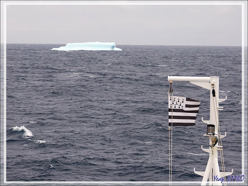 Nous sommes proches de la Géorgie du Sud, et ce bel iceberg nous le fait savoir ...