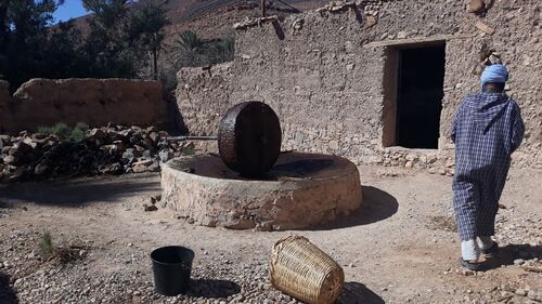 Le moulin à huile