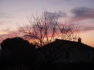 2011decembre-004.jpg