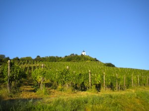 Slovénie 2011 090