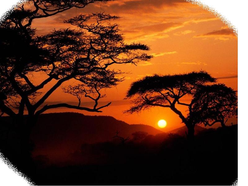 Tube Fonds ( Paysage et coucher de soleil )