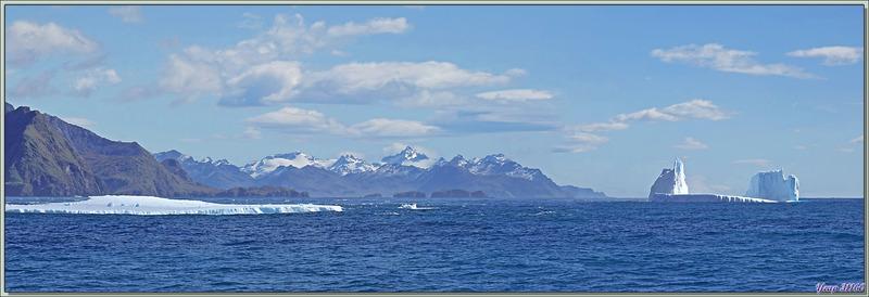 Les passagers remontés à bord, les Zodiacs remisés sur le pont supérieur, nous naviguons vers Grytviken - Géorgie du Sud
