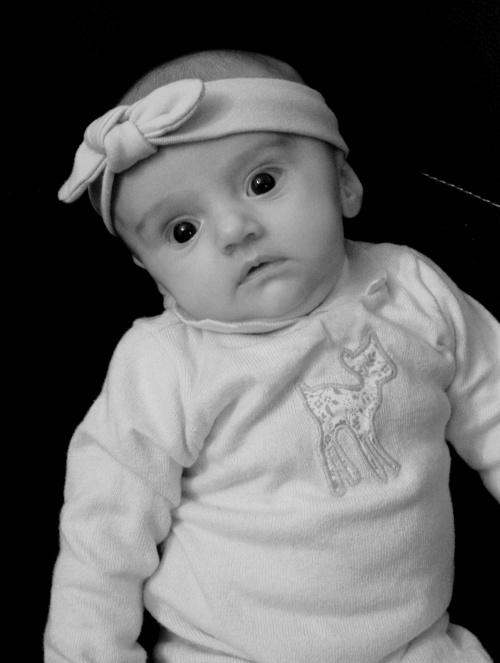 Voici Mélina une choupinette de 2 mois !!!