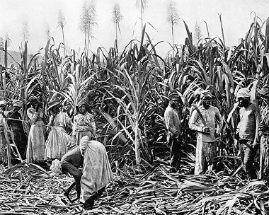 L'esclavage des noirs américains ...