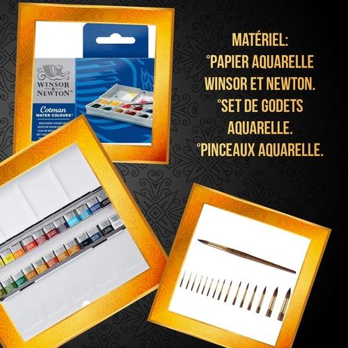 Dessin et peinture - vidéo 3391 : Comment peindre ou dessiner des ecrevisses ? - aquarelle.
