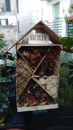 Hôtel à insectes : réalisation