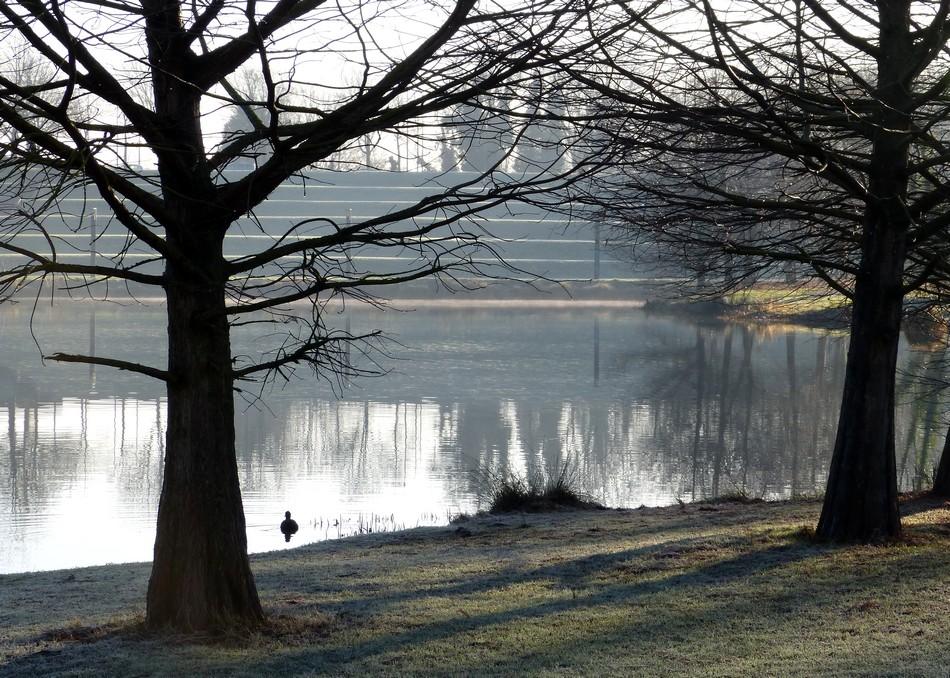 Toujours au parc, frigorifiée, mais c'est si beau !