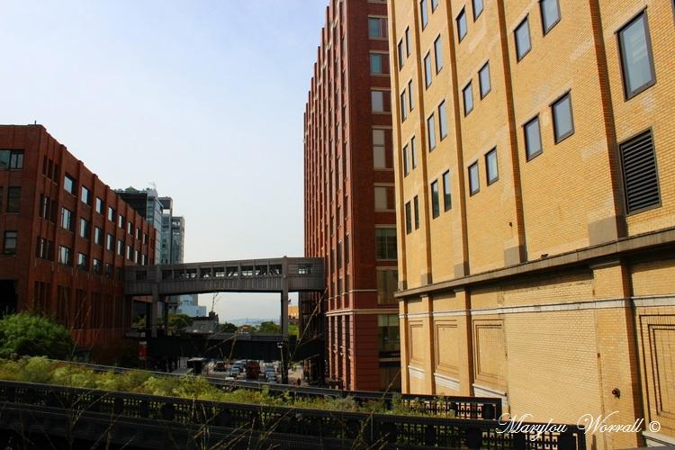 New York : The High Line 1/3