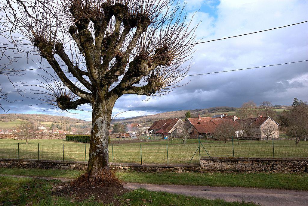 Bellenot-sous-Pouilly