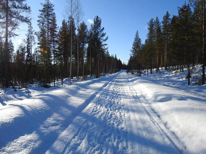 Randonnée en Suède.