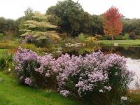 Parc de Cornouaille