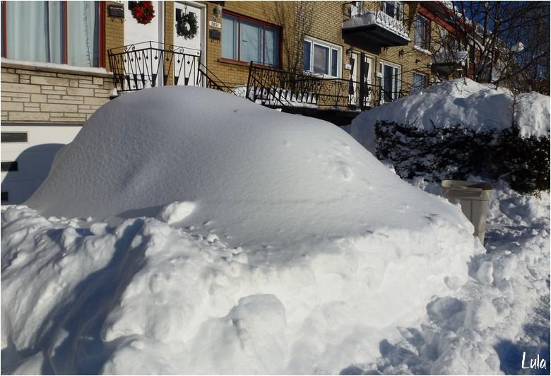 Au lendemain de la tempête de neige
